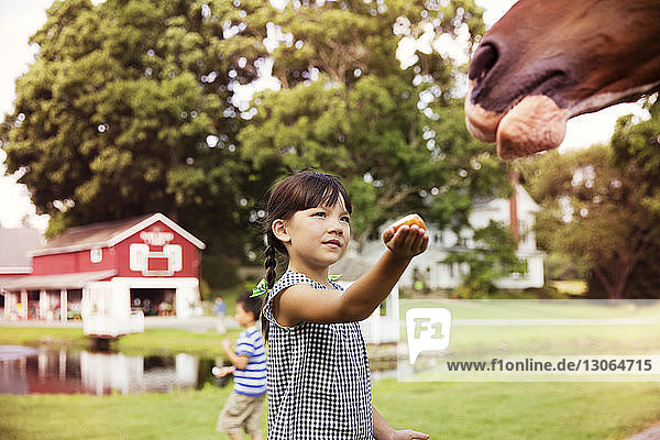 Girl feeding horse while standing in ranch