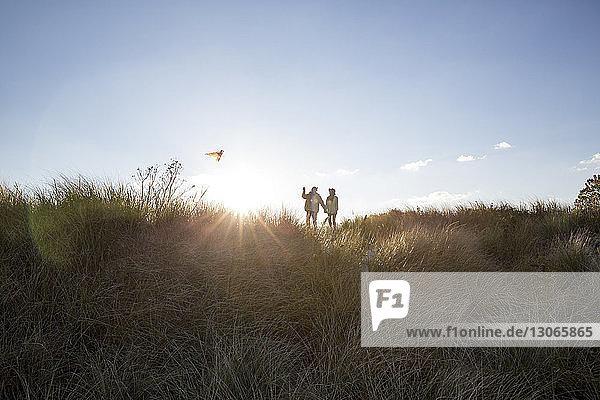 Paar fliegende Drachen im Stehen auf dem Feld gegen den Himmel