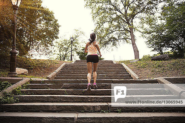 Rear view of woman exercising on steps in park