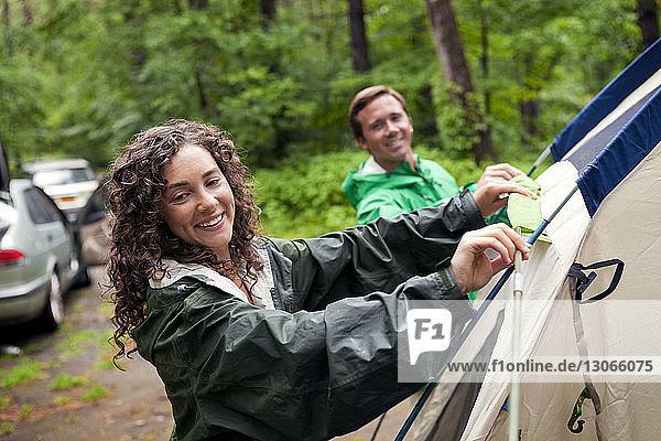 Glückliche Freunde bereiten Zelt im Wald vor