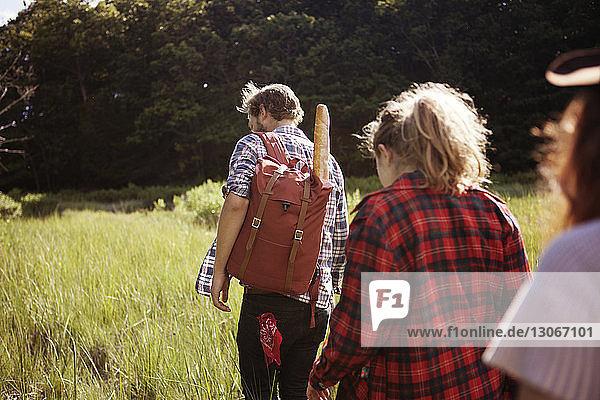 Rückansicht von Wanderern auf einem Feld im Wald