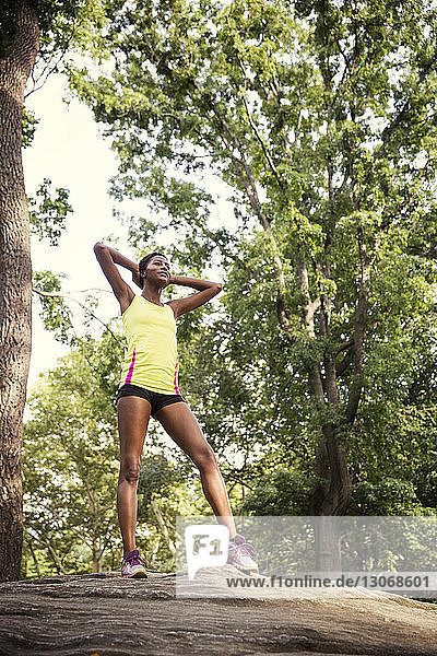 Woman exercising while standing on tree trunk