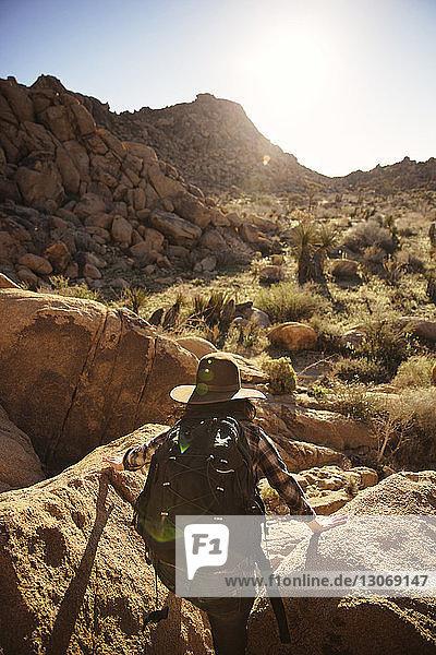 Rückansicht einer Frau  die an einem sonnigen Tag am Fels klettert