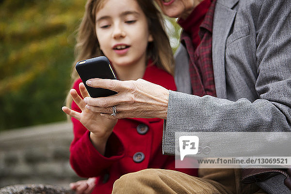 Family using mobile phone while sitting in park