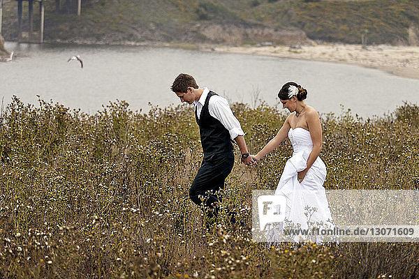 Frisch verheiratetes Paar hält beim Spaziergang auf Grasfeld Händchen