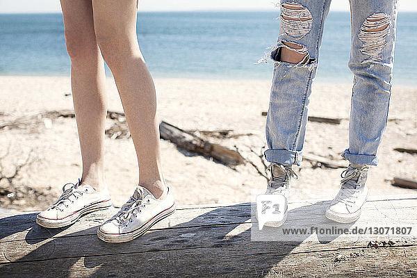 Niedrige Sektion von Freunden  die auf einem Baumstamm am Strand stehen