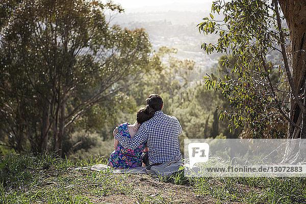 Rückansicht eines Paares mit umarmtem Arm  das auf einem Feld im Wald sitzt