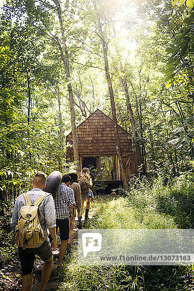 Rear view of happy friends walking in forest