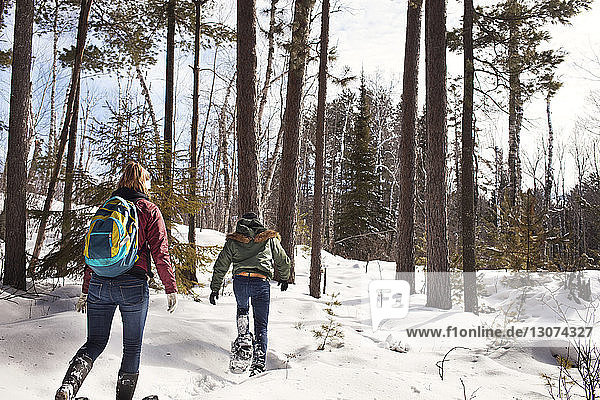 Rear view of male and female hikers walking in forest during winter