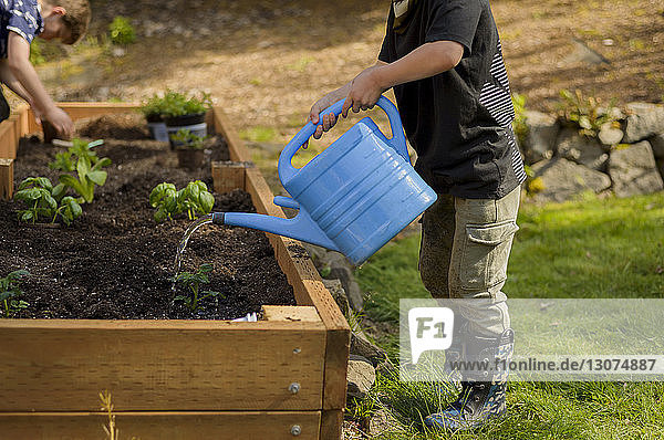 Boy watering plants while brother planting in raised-bed gardening at backyard