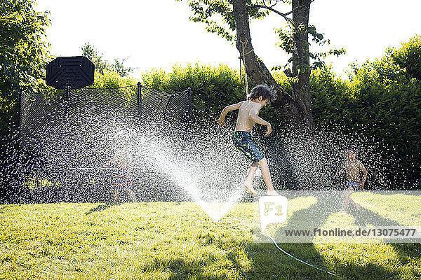 Boys playing in sprinkler