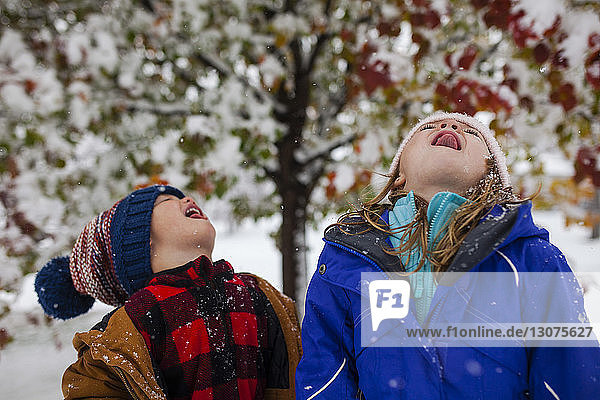 Playful siblings sticking out tongue while standing outdoors during winter