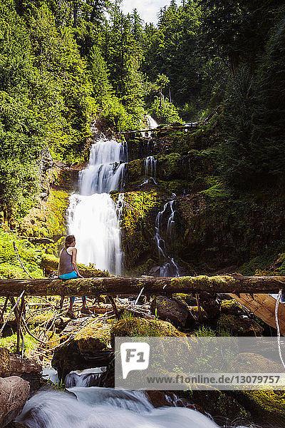 Rückansicht einer Frau  die auf einem umgefallenen Baum vor Linton Falls sitzt