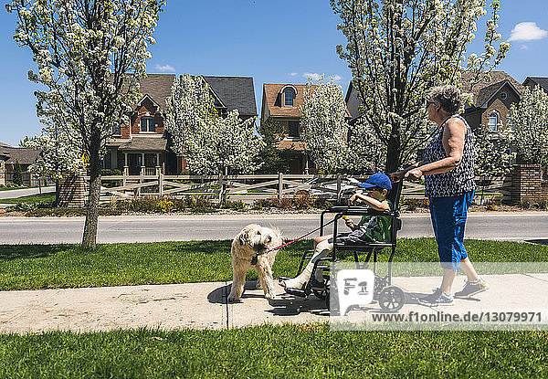 Side view of grandmother pushing grandson on wheelchair with dog on footpath during sunny day