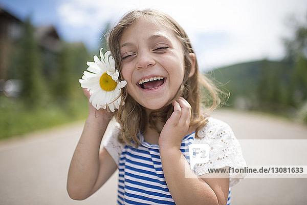 Fröhliches Mädchen hält Gänseblümchen  während es auf der Straße steht