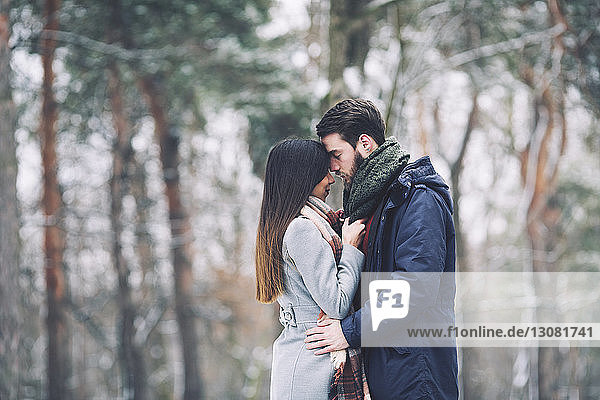 Couple romancing while standing in forest during winter