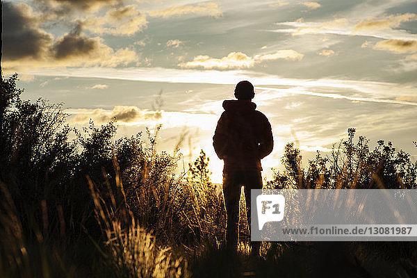 Rückansicht einer Frau  die bei Sonnenuntergang im Shevlin-Park inmitten von Pflanzen auf dem Feld gegen den Himmel steht