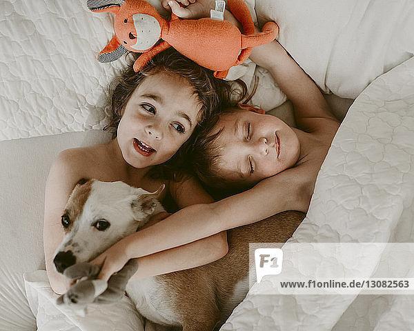 Draufsicht auf die hemdlosen Geschwister  die mit Hund und Plüschtieren auf dem Bett liegen