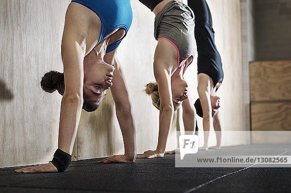 Determined female athletes doing handstand exercise in gym