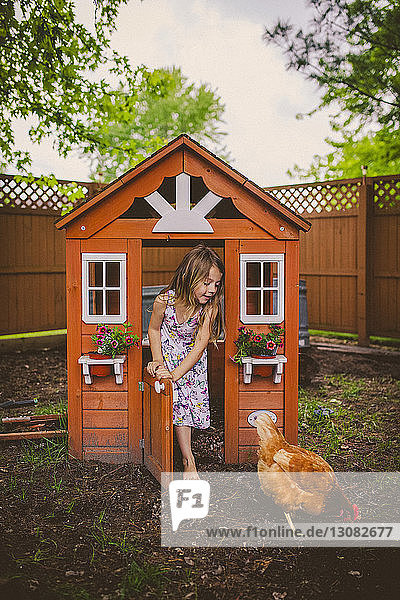 Happy girl looking at hen while standing on entrance of chicken coop