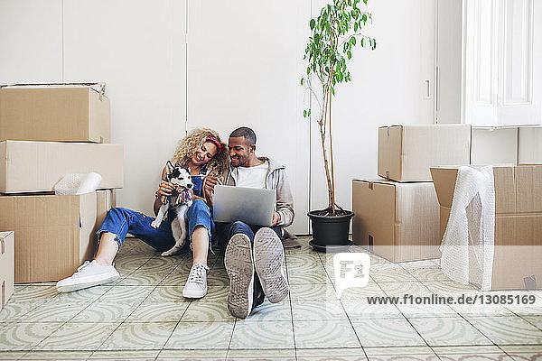 Glückliches Paar spielt mit Hund  während es in seinem neuen Zuhause einen Laptop benutzt