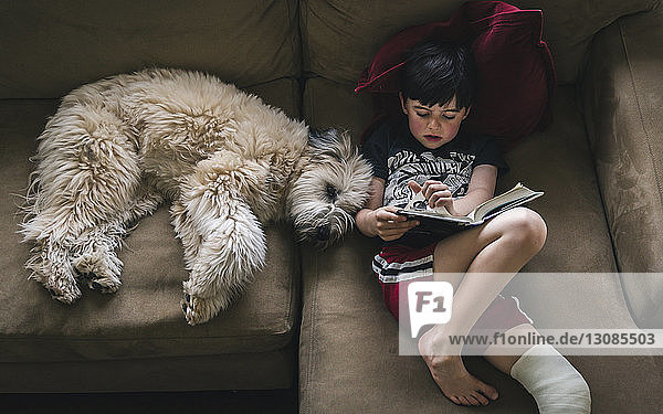 High angle view of boy with fractured leg reading book while lying by dog on sofa at home