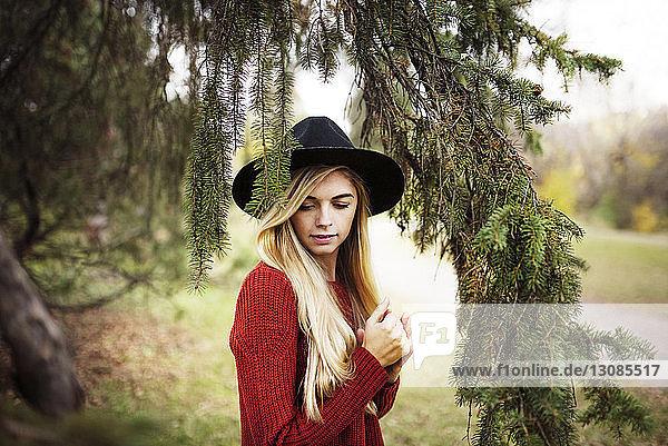 Schöne Frau steht bei Zweigen auf dem Feld