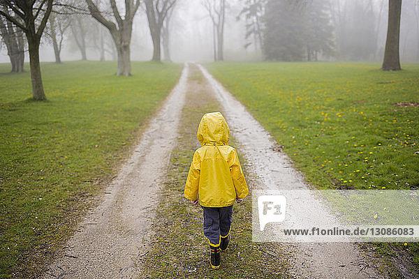Rückansicht eines Jungen im Regenmantel  der bei nebligem Wetter auf einem Feldweg geht
