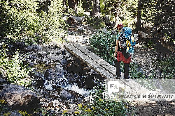 Rückansicht eines Wanderers  der auf Holzbrettern über einen Fluss im Wald geht
