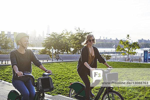 Glückliche Freunde fahren Fahrrad im Park gegen den klaren Himmel