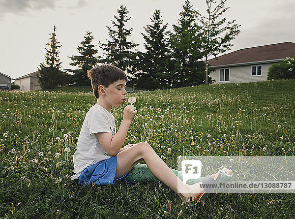 Side view of boy with broken leg blowing dandelion while sitting on grassy field at park