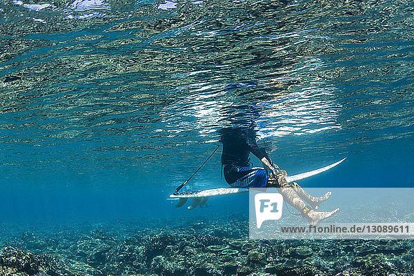 Niedriger Anteil von Menschen  die im Meer surfen