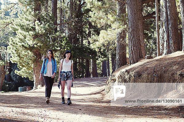 Happy female friends walking in forest