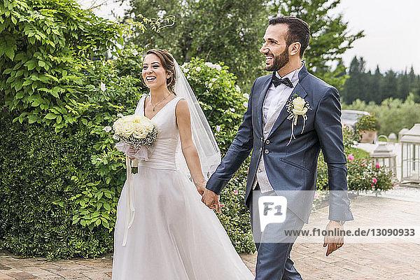 Glückliches frisch verheiratetes Paar hält sich beim Gehen an Pflanzen an den Händen