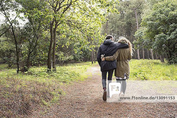 Rückansicht eines romantischen Paares mit umarmenden Armen beim Waldspaziergang