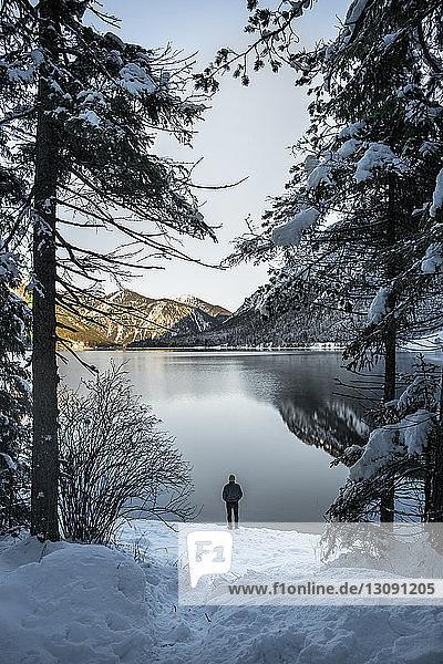 Rückansicht eines Mannes  der im Winter am Seeufer im Wald steht