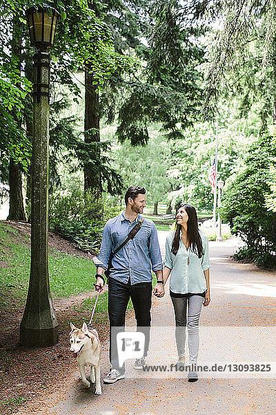 Glückliches Paar hält sich an den Händen und geht mit Hund im Park auf dem Fußweg