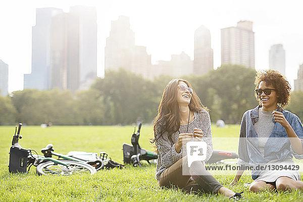 Glückliche Freunde unterhalten sich auf einem Grasfeld