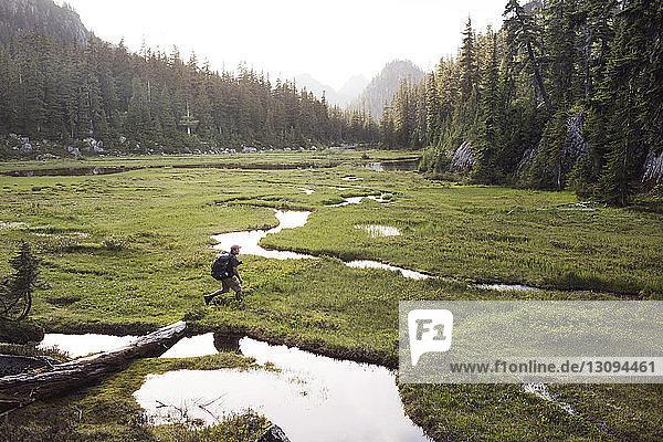 Man walking on grassy field amidst trees
