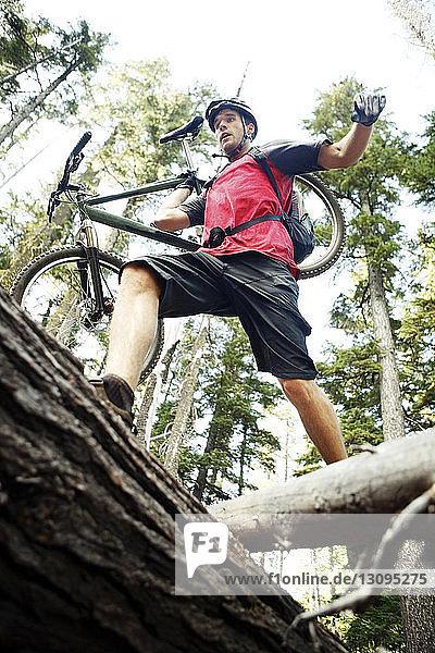 Niedrigwinkelansicht eines Wanderers  der ein Fahrrad trägt  während er auf Baumstämmen geht