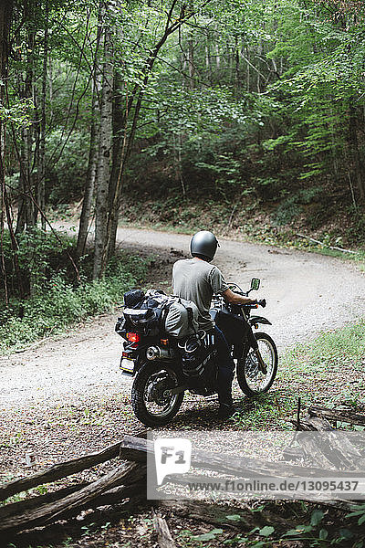 Rear view of man riding motorcycle on road in forest