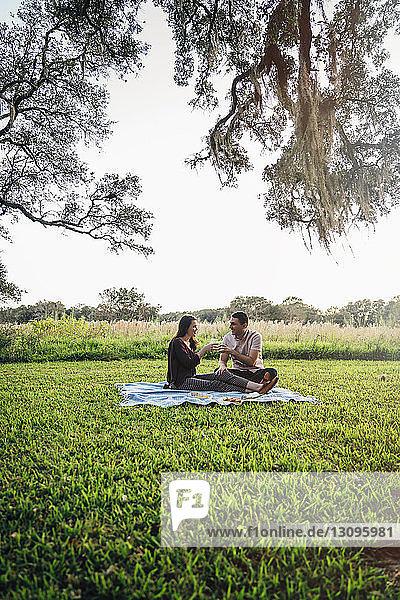 Ein Paar trinkt im Park auf einer Decke gegen den Himmel sitzend