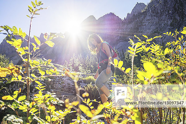 Female hiker hiking in forest against mountain at North Cascades National Park