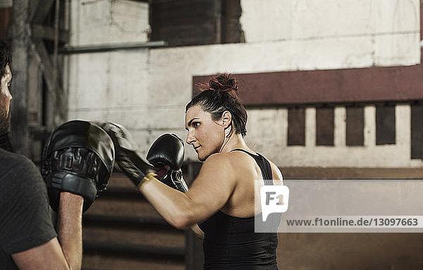 Entschlossene Boxer  die im Fitnessclub trainieren