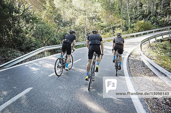 Rückansicht der männlichen Freunde beim Radfahren auf der Straße
