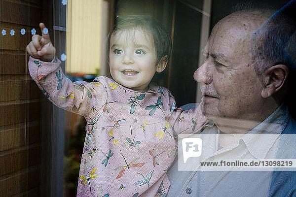 Fröhliche Enkelin berührt Blumenmuster am Fenster  während sie vom Großvater zu Hause getragen wird