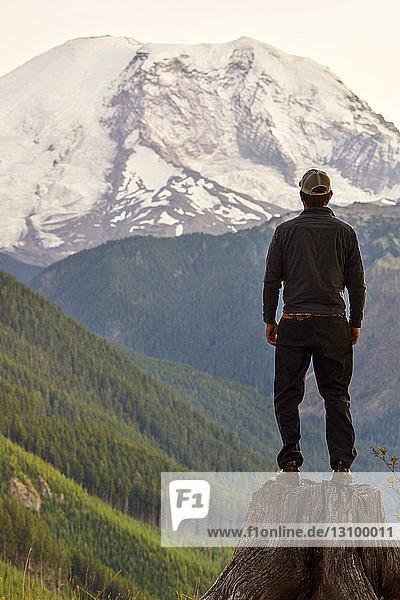 Rückansicht eines Mannes  der auf einem Baumstumpf gegen einen schneebedeckten Berg steht