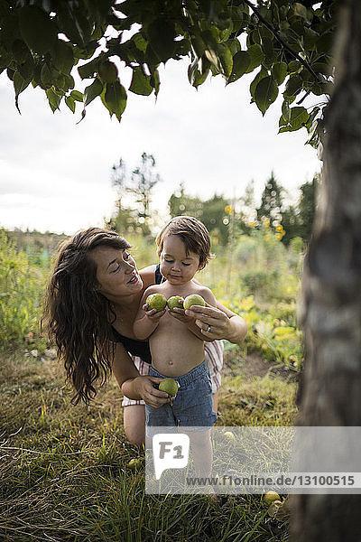 Mutter betrachtet hemdlosen Sohn mit Obst im Gemeinschaftsgarten Mutter betrachtet hemdlosen Sohn mit Obst im Gemeinschaftsgarten