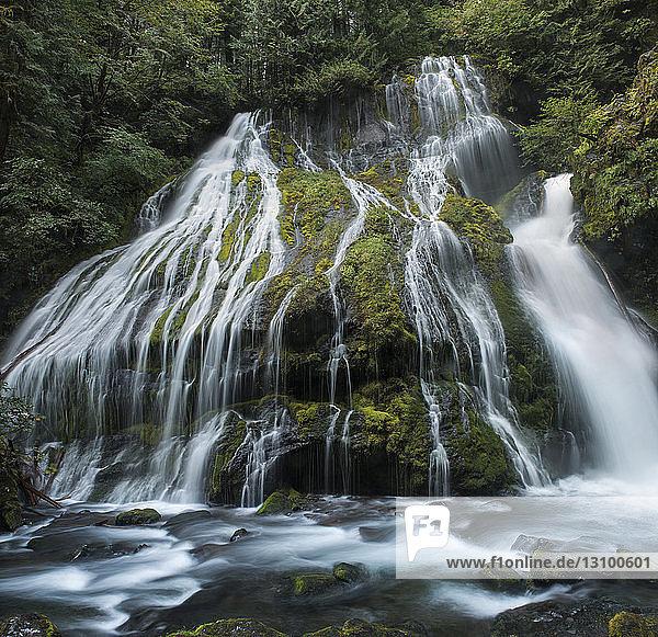 Niedrigwinkelansicht des Wasserfalls im Gifford Pinchot National Forest