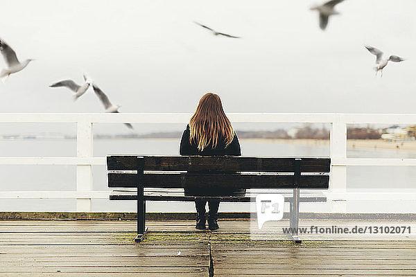 Rückansicht einer Frau  die auf einer Bank am Geländer gegen das Meer sitzt